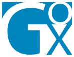 Gox Global – IT Advisory